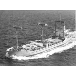 """Frachtmotorschiff """"Arosia""""..."""